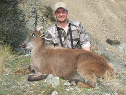 frank_cole_tahr_female_consultant_the_dr