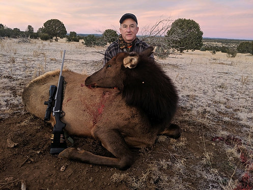 Private Land Cow Elk Hunts New Mexico