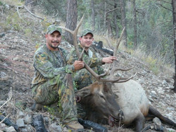 Elk - Brothers 1st