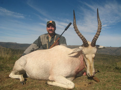 frank_cole_white_blesbuck_consultant_the