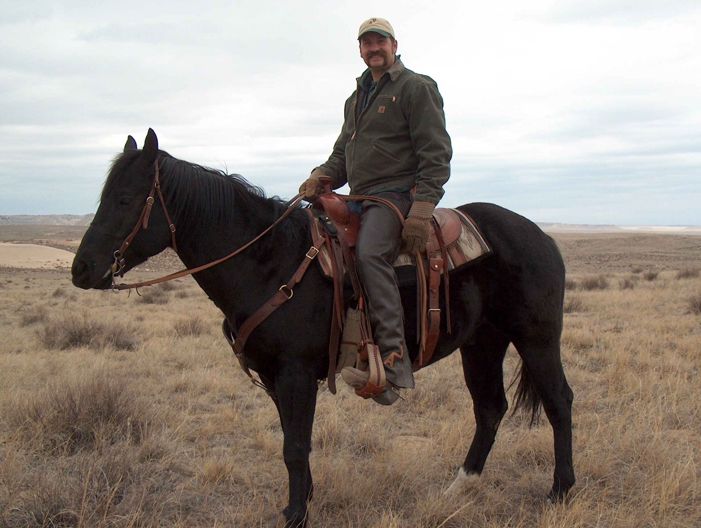 Frank_cole_horseback_consultant_the_draw