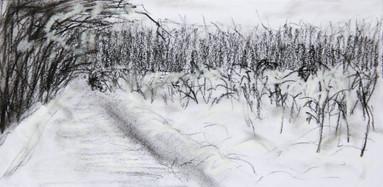 sikornik zima.jpg