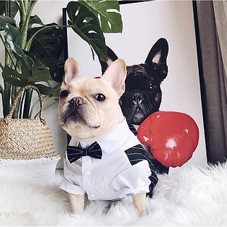 Wedding Pet Dog Suit Costume Pet Tuxedo Clothes For Small Medium Dogs Pug French Bulldog B