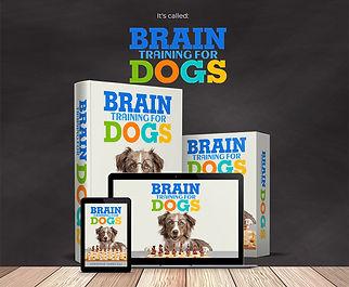 brain training for dogs.jpg