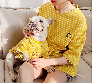 Soft Pets Dogs Clothing Cotton Pet Matching Clothes For Small Dogs-yellow.jpg