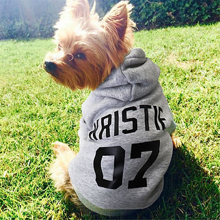 Personalized Pet Name Dog Hoodies For All Size Dogs-model.jpg