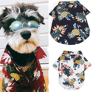 sumer dog shirt-cool clothes for dog.jpg