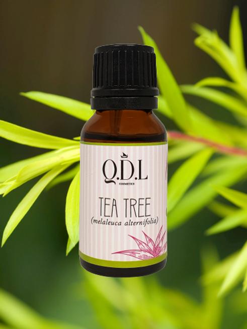 Ätherisches Bio-Teebaumöl (Melaleuca Alternifolia) aus Australien (15ml)