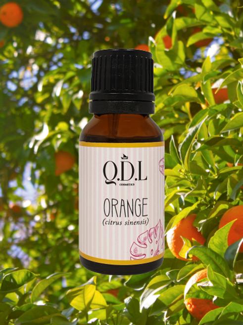 Ätherisches Bio-Orangenöl (Citrus Sinensis) aus Mexiko (15 ml)