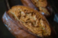 Pain-de-campagne-Boulangerie-Thierry.jpg