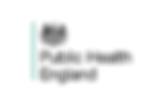 public health.png
