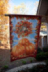 Fall In My Backyard