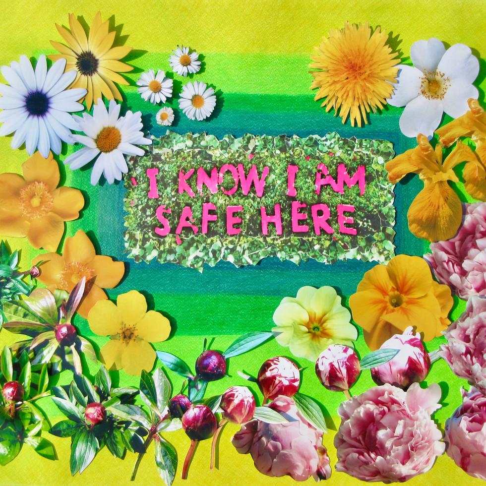 I Know I Am Safe Here - Sue Hosler 2020