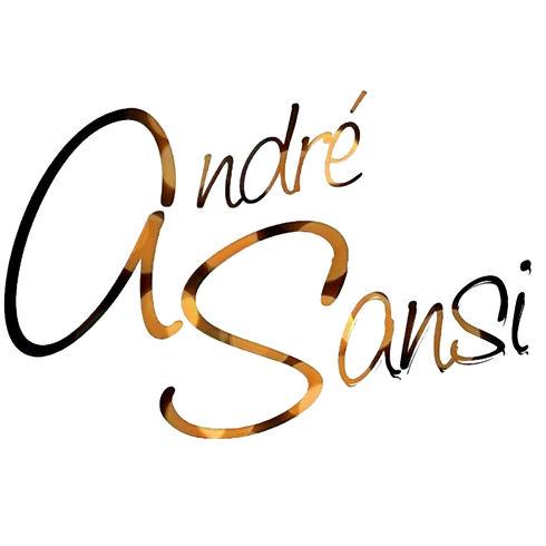 Logo---Andre%25252525CC%2525252581-Sansi_edited_edited_edited_edited_edited.jpg