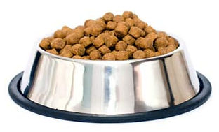 dry dog food kibble dried