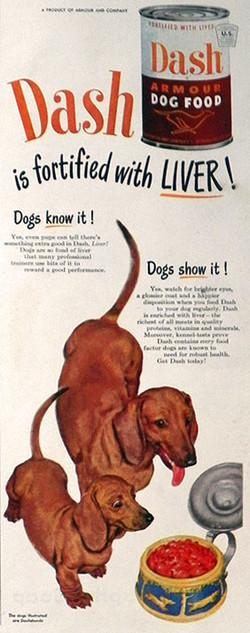 dash dog food