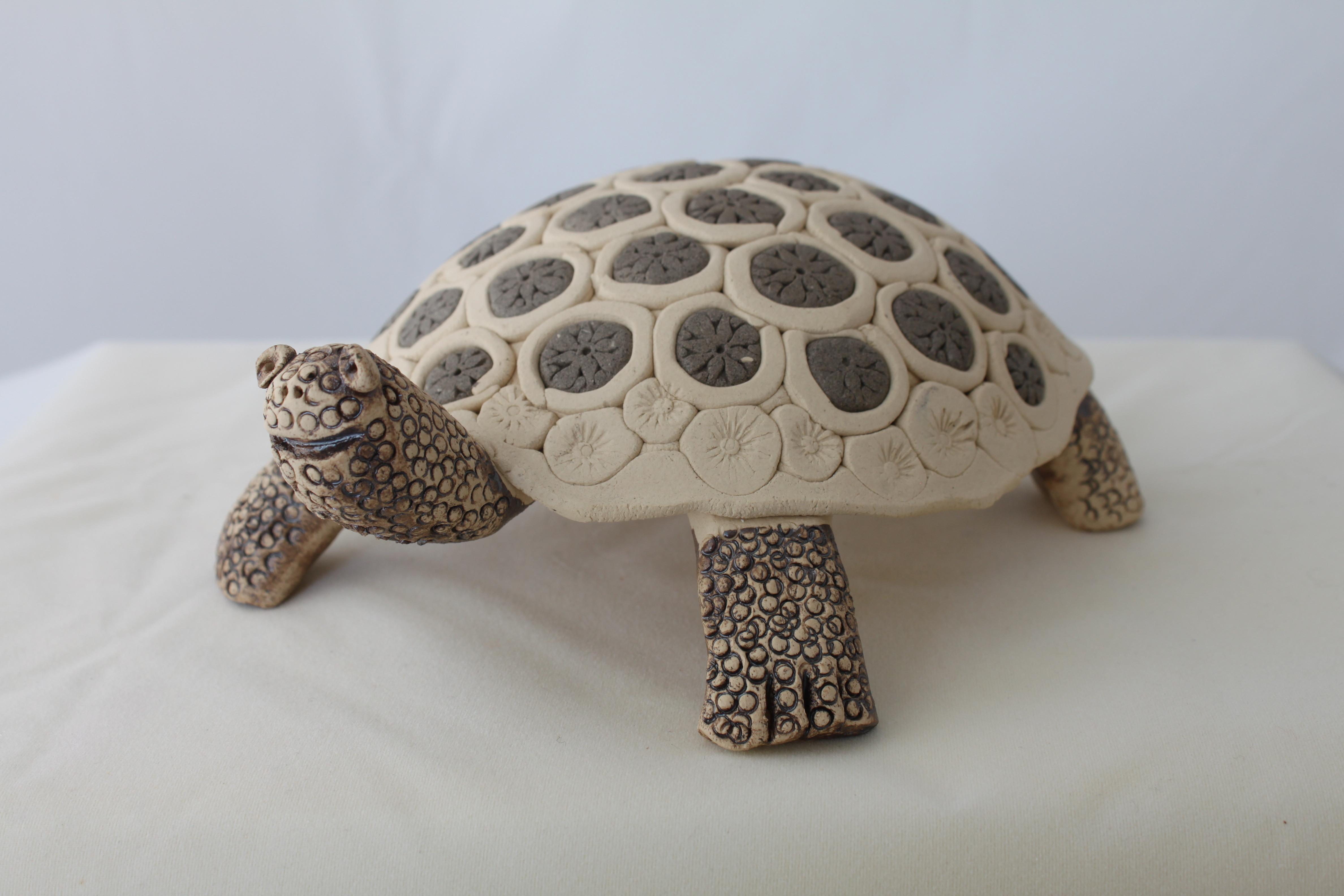 Workshop Schildkröte