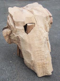 Dent de morcle