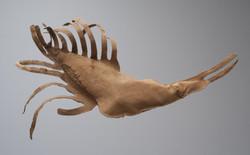 Fab Tessier-Monnot Insecte 60x100x25 cm