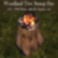 AAA WOODLAND TREE STUMP FIRE.png