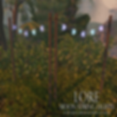 {LORE} Moon String Lights (Hunt Item).pn