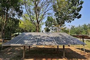 tree-shade-affects-solar-panel-productio
