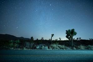 Mojave Nightscape