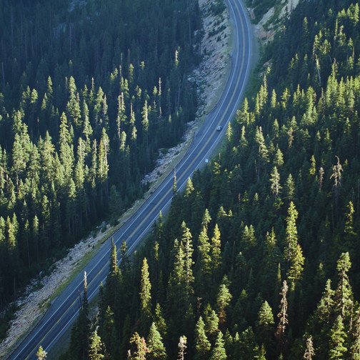 Lone Car on Woodland Highway