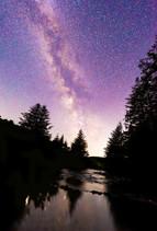 Bellever Woods Milky Way