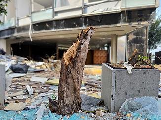 Beirut Katastrophe