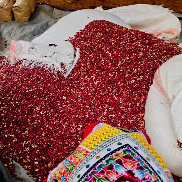 Bohnen für Ost Ruanda