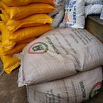 Maize Flour, Reis, Bohnen für die älteste Bevölkerung von Ruanda