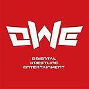 220px-Oriental_Wrestling_Entertainment.j