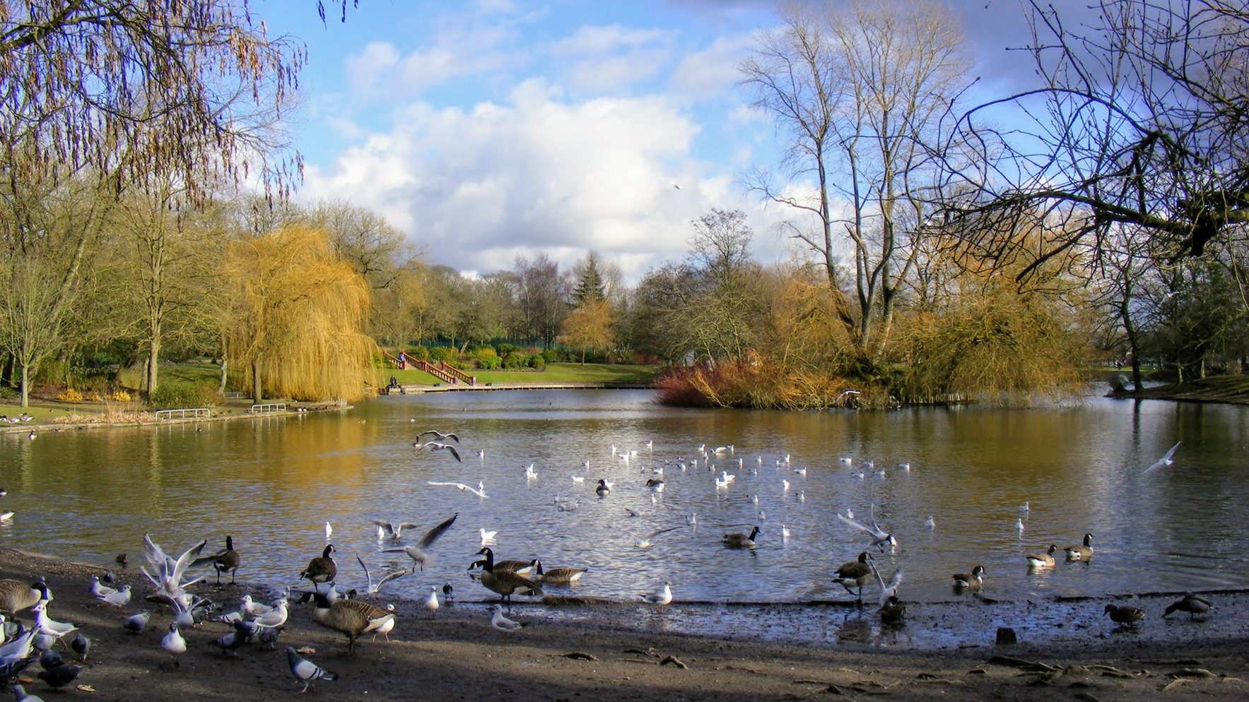 Hanley Park, Stoke-on-Trent