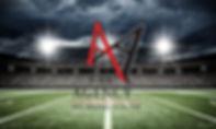 Agency Stadium V2 60x36.jpg