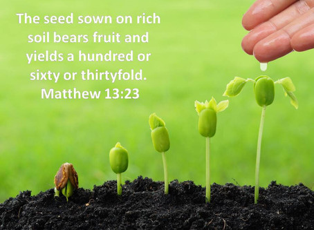 Deep-Rooted Faith