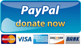 PayPal donate now button.png