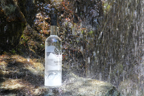 thunderbird-spirit-water-13.jpg