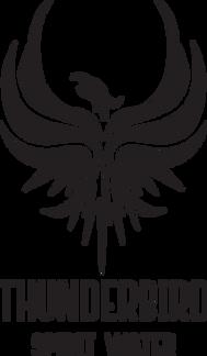 thunderbird-logo-high-res.png