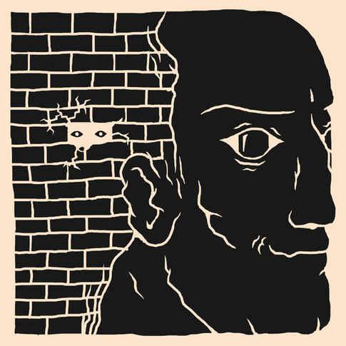 Friendly Surveillance