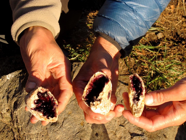 Chaussons aux myrtilles sauvages cuits à la braise