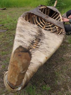 Canoë en bois et peaux crues