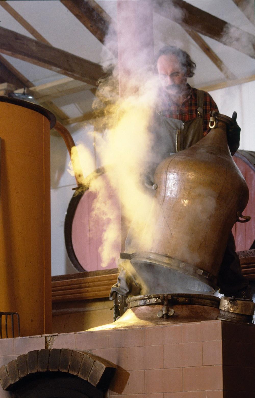 Tsipouro distillation process