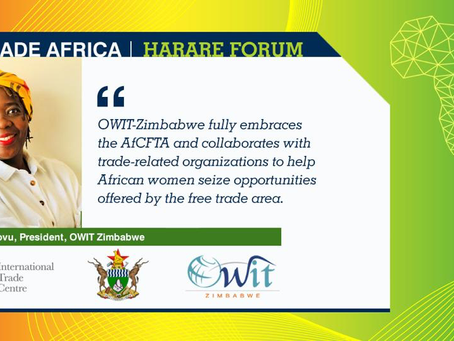 OWIT-Zimbabwe Scaling Up the Trade and Gender Agenda