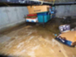 Flooded Crawlspace.jpg
