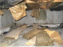 Crawlspace insulation problem.jpg