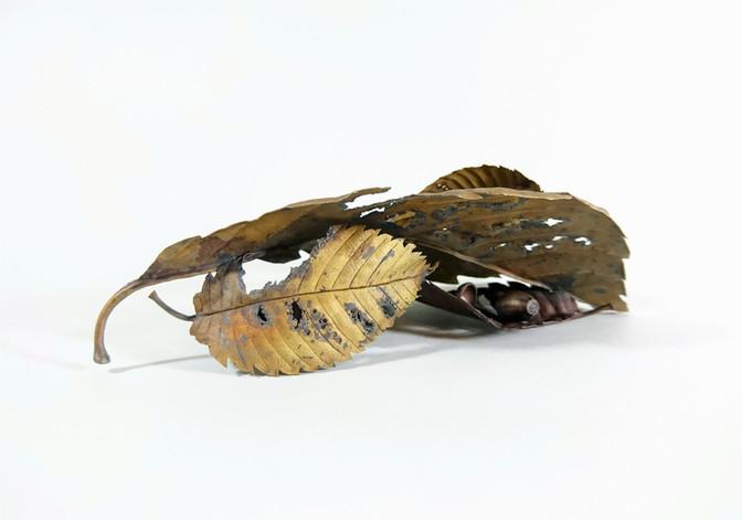 Tiny piece in Autumn