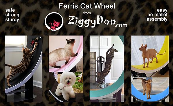 ferris Cat Wheel