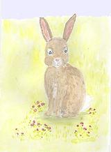 Cute Rabbit card.jpg