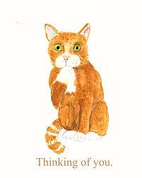 cat thinking of you.jpg